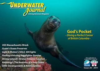 Strytan in Underwaterjournal