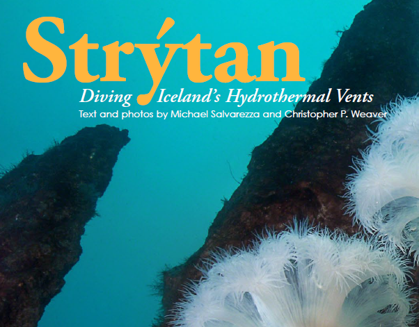 Diving Iceland's Hydrothermal Vents